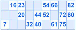 reglas del bingo de 90 bolas