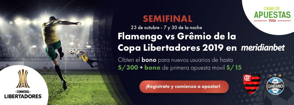 Flamengo vs Gremio Copa Libertadores 2019